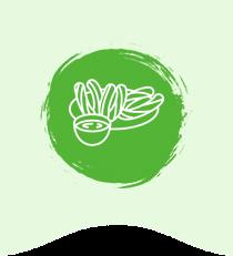 botanas de amaranto